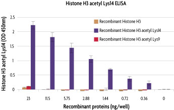 Specificity of Histone H3 acetyl Lys14 ELISA