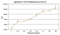 Graph showing the luciferase activity of the LightSwitch STAT Reporter Cell Line (HT1080) following induction with increasing amounts of IFN gamma