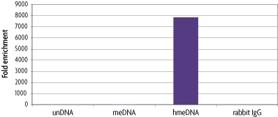 Fold Enrichment of hydroxymethylcytosine DNA from hMeDIP Kit after normalization with negative control rabbit IgG