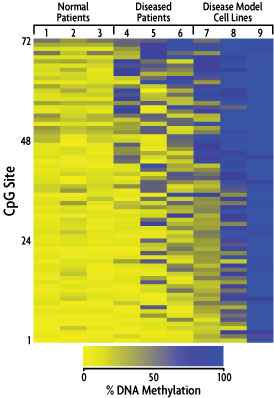 Heat map of Targeted Next-Gen Bisulfite Sequencing data